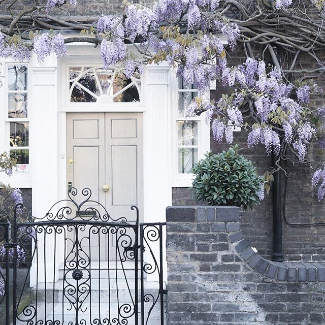 When you can't get enough of pretty doors and wisteria 💜💜💜📸 @ariannasdaily #prettydoortraits